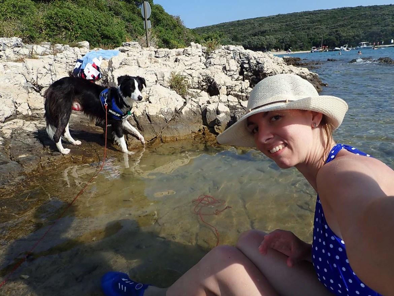 Plage de chiens en Croatie