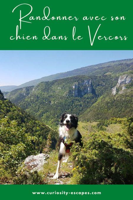 Randonner avec son chien dans le Vercors: 3 itinéraires faciles