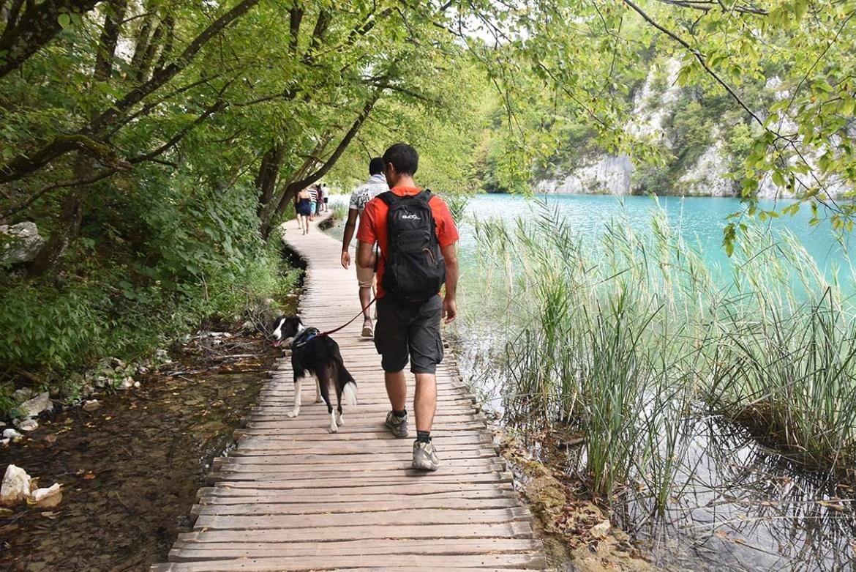 Visiter les lacs de Plitvice avec son chien