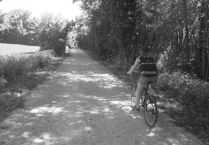 Vélo sur la Voie Verte des balcons du Dauphiné