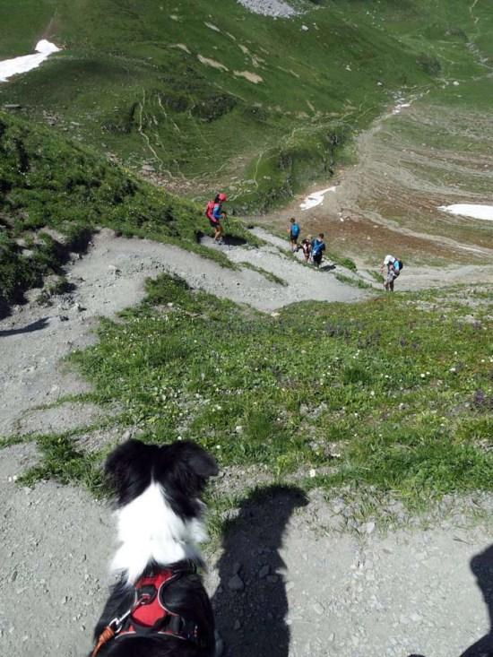 Descente du col du coin, Savoie