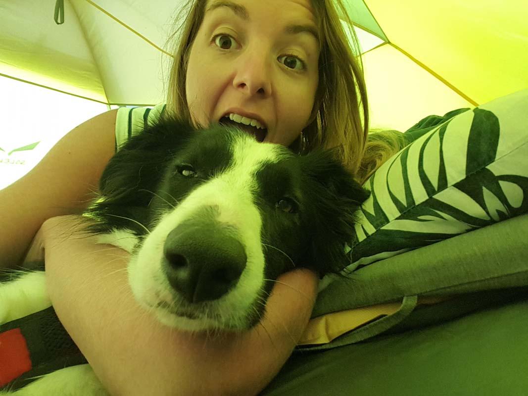 Dormir sous la tente avec son chien