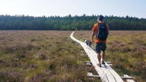 Randonner dans le parc national d'Asnen avec son chien