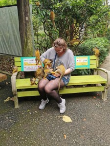 Nourrir les singes à Yaima Sato, Ishigaki, Japon