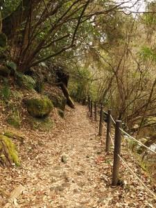 Sentier des gorges de Kikuchi, Kyushu, japon