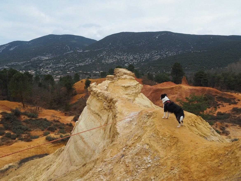 Visiter le colorado provençal avec son chien