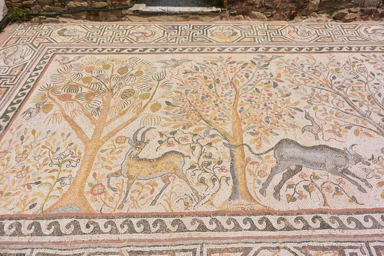 Extraordinaire mosaïque sur le site Heraclea Lyncestis