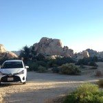 Driving in Joshua Tree