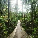 Hanging Bridge Arenal volcano