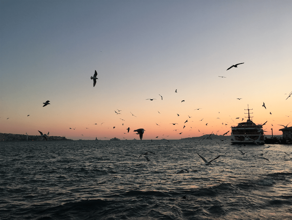 why visit istanbul now