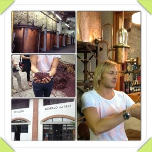Schiavo Distilleria 1887n