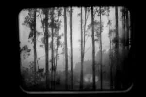 Matias Costa Photography 1