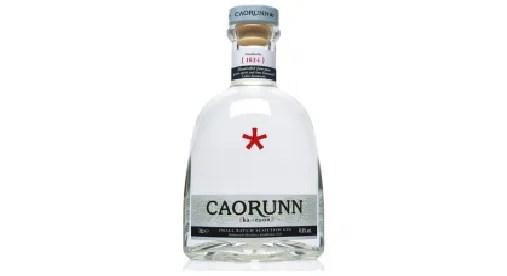 i migliori gin più buoni al mondo