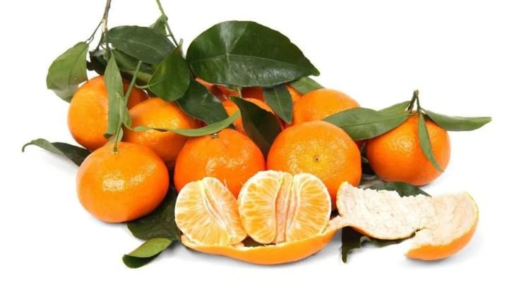 Grappa al mandarino fatta in casa ricetta