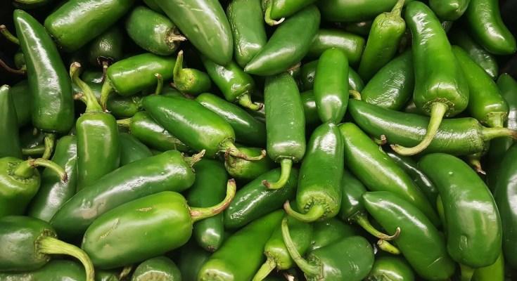 Peperoncini verdi sotto aceto ricetta