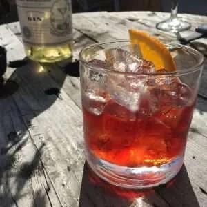 gin e vermouth