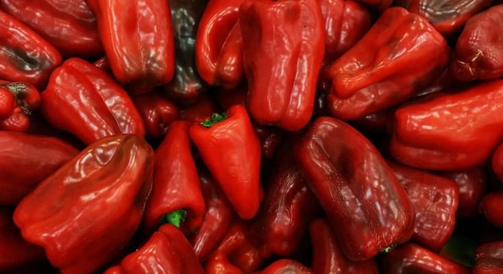 Peperoni rossi secchi ricetta
