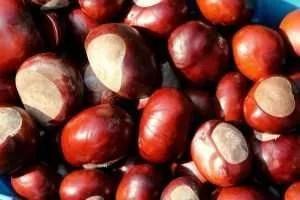 Confettura di marroni castagne ricetta