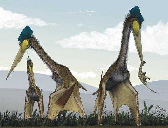 Quetzalcoatlus[1]