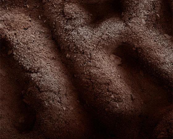 Biscoito recheado 'Oreo', parecido com o 'Negresco' aqui do Brasil.