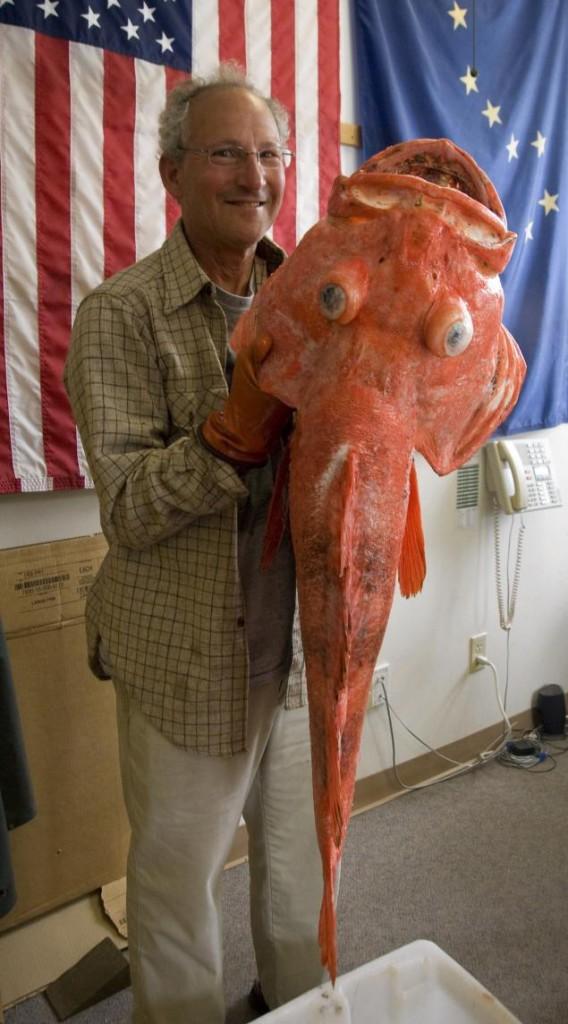 record-rockfish[1]