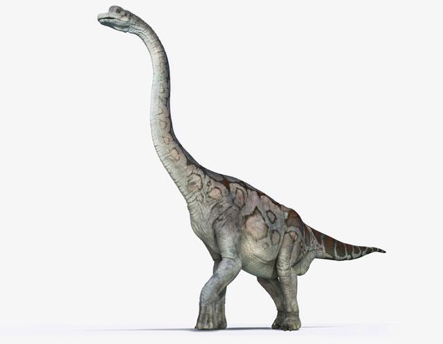 braquiossauro