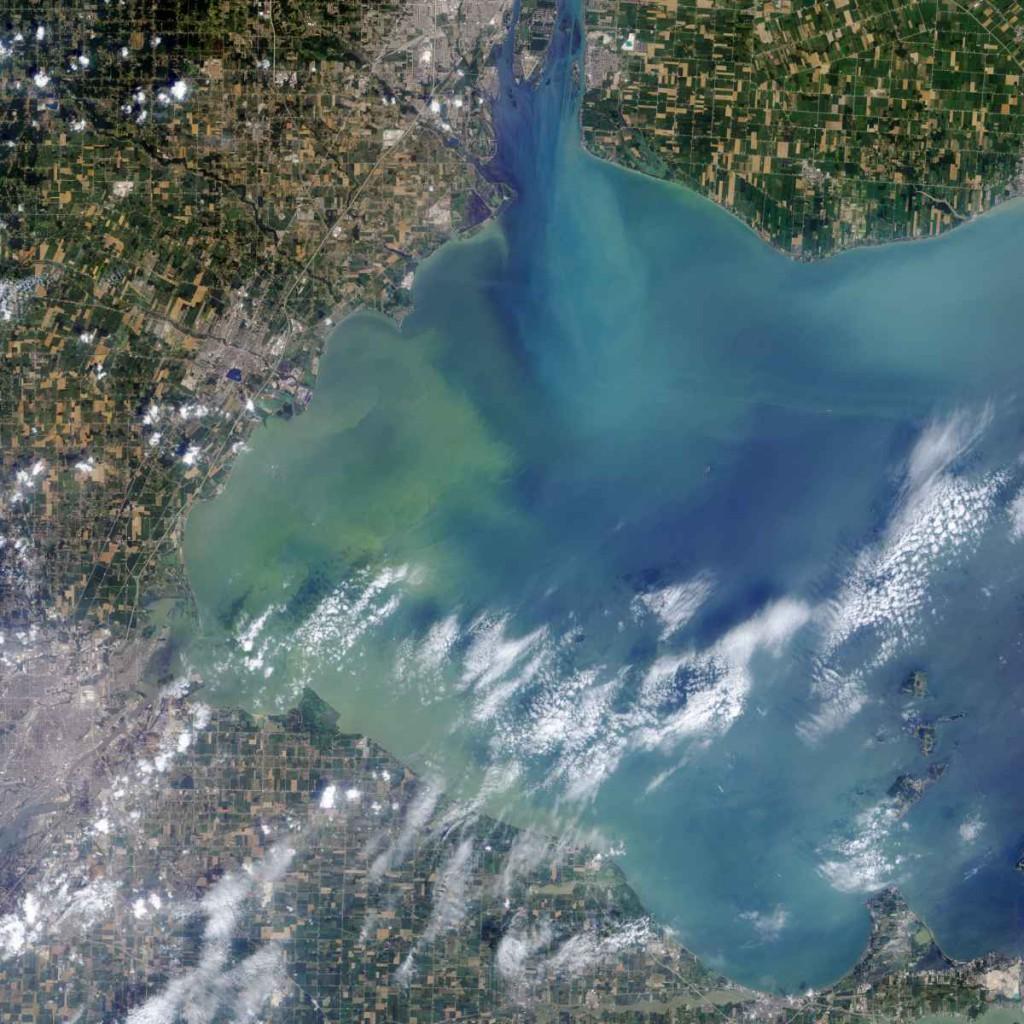 """Imagem de satélite, tirada em agosto de 2014, mostra uma enorme """"mancha de algas"""" no lago Erie"""