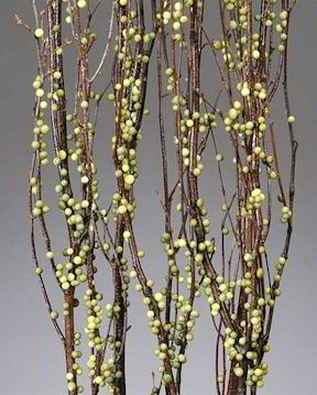Berry Birch Branches for Decoration