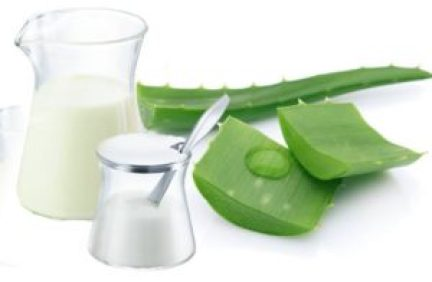 Aloe Vera and milk for healthy skin