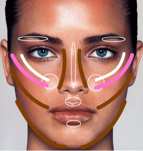 places to put highlighter and contour