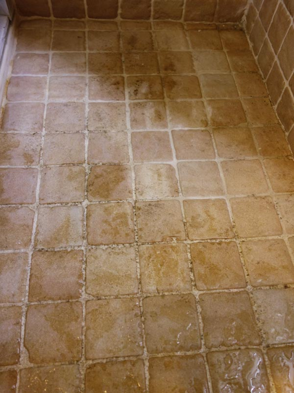 Best Way To Remove Black Mold From Tile And Grout Curious Nut - Best way to get rid of mold in shower grout