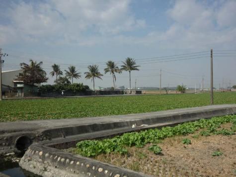 Walk-Farm5