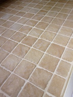 Best Cleaner For Pink Mold On Bathroom Grout Curious Nut