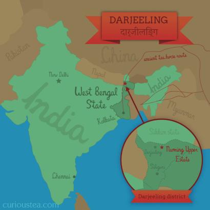 Namring Upper tea estate, Darjeeling