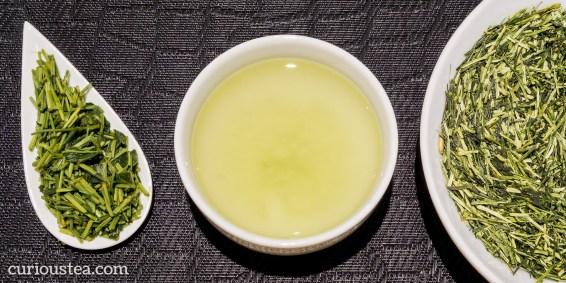 Blog - Kirishima Sencha Kukicha Kagoshima Japan Green Tea