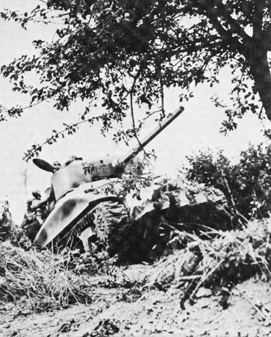 Un Sherman estadounidenses, con el cortasetos Culin en el frente