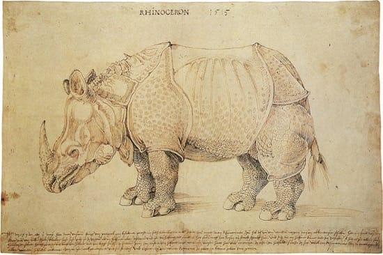 El rinoceronte de Alberto Durero