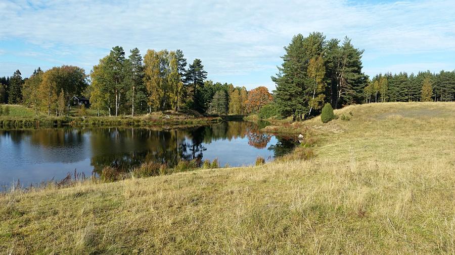 Sämsholm kursgård m/Karin Friberg, Gilliam kennel