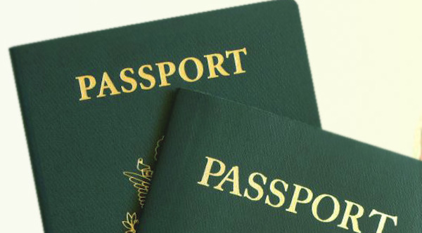 Nigerian Immigration Passport Application Form | Guideline and Requirement