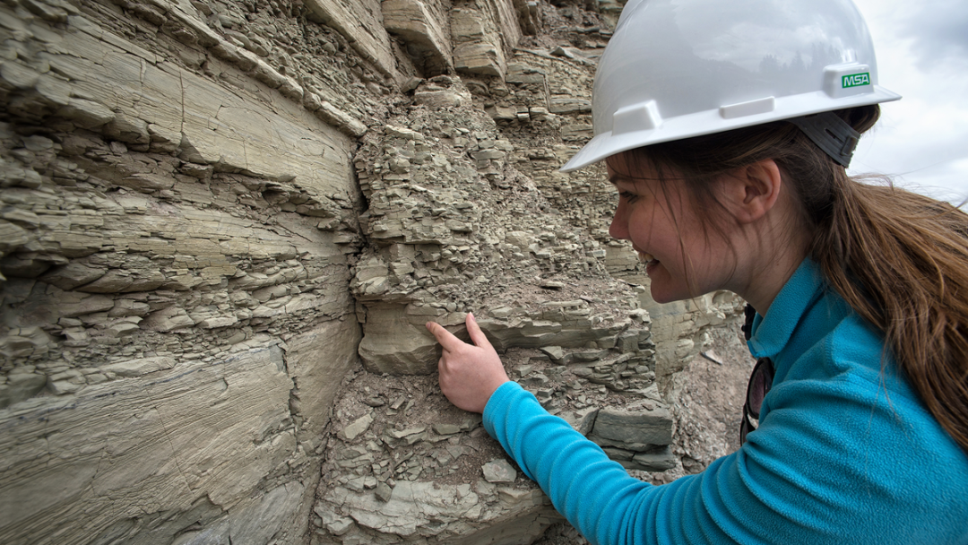 B.Sc. Geology Course