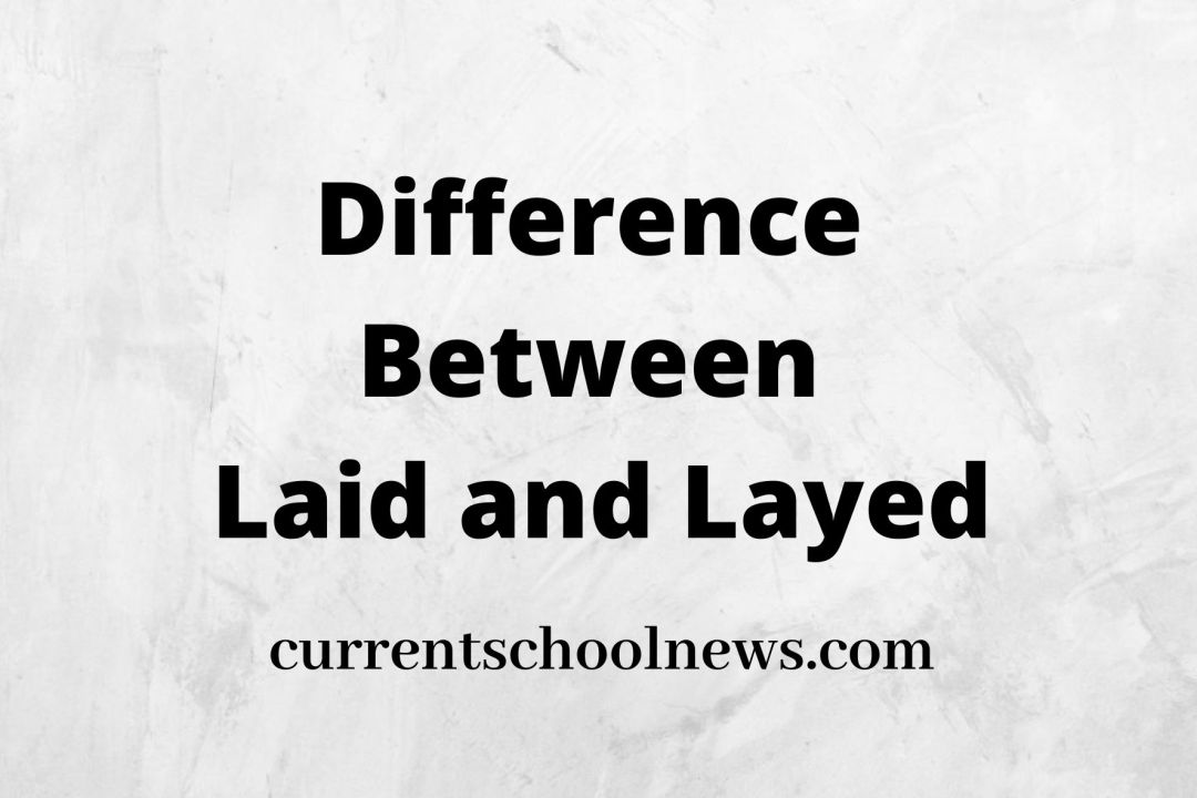 10 Notable Differences Between Laid and Layed
