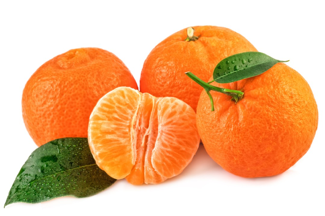 10 Major Differences Between Orange and Tangerine