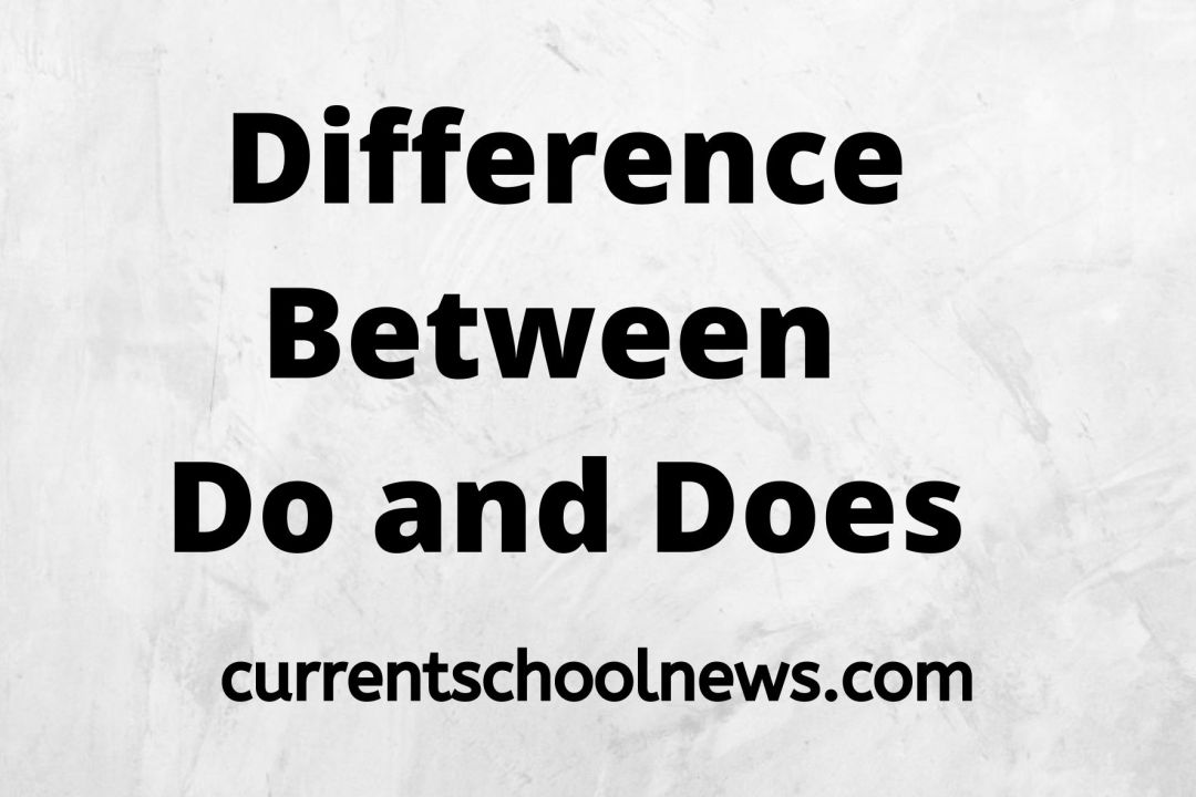 10 Notable Differences Between Do and Does