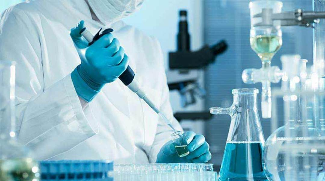B.Sc Biotechnology Syllabus