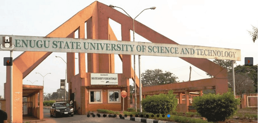 About Enugu State University of Science and Technology