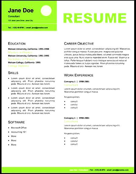 Professional Resume Layout Free Samples Examples