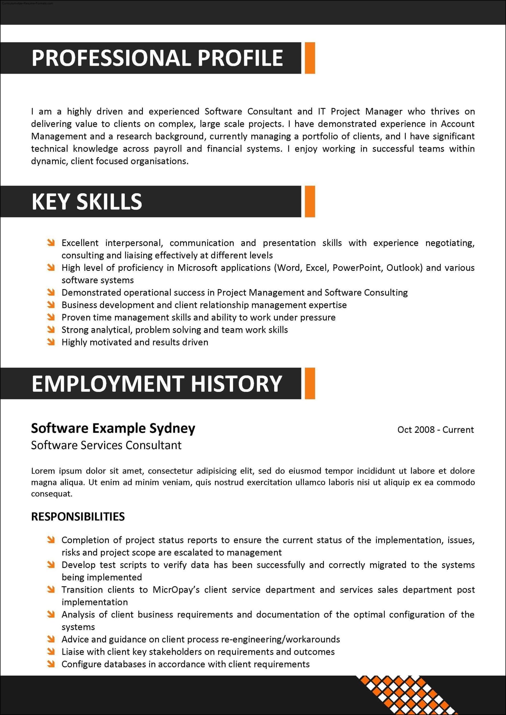 Corporate Resume Template Free Samples Examples Amp Format Resume Curruculum Vitae