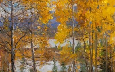 Vermilion Lake Aspens