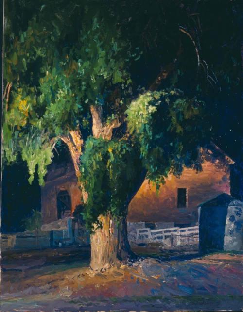 Big Barn Nocturn