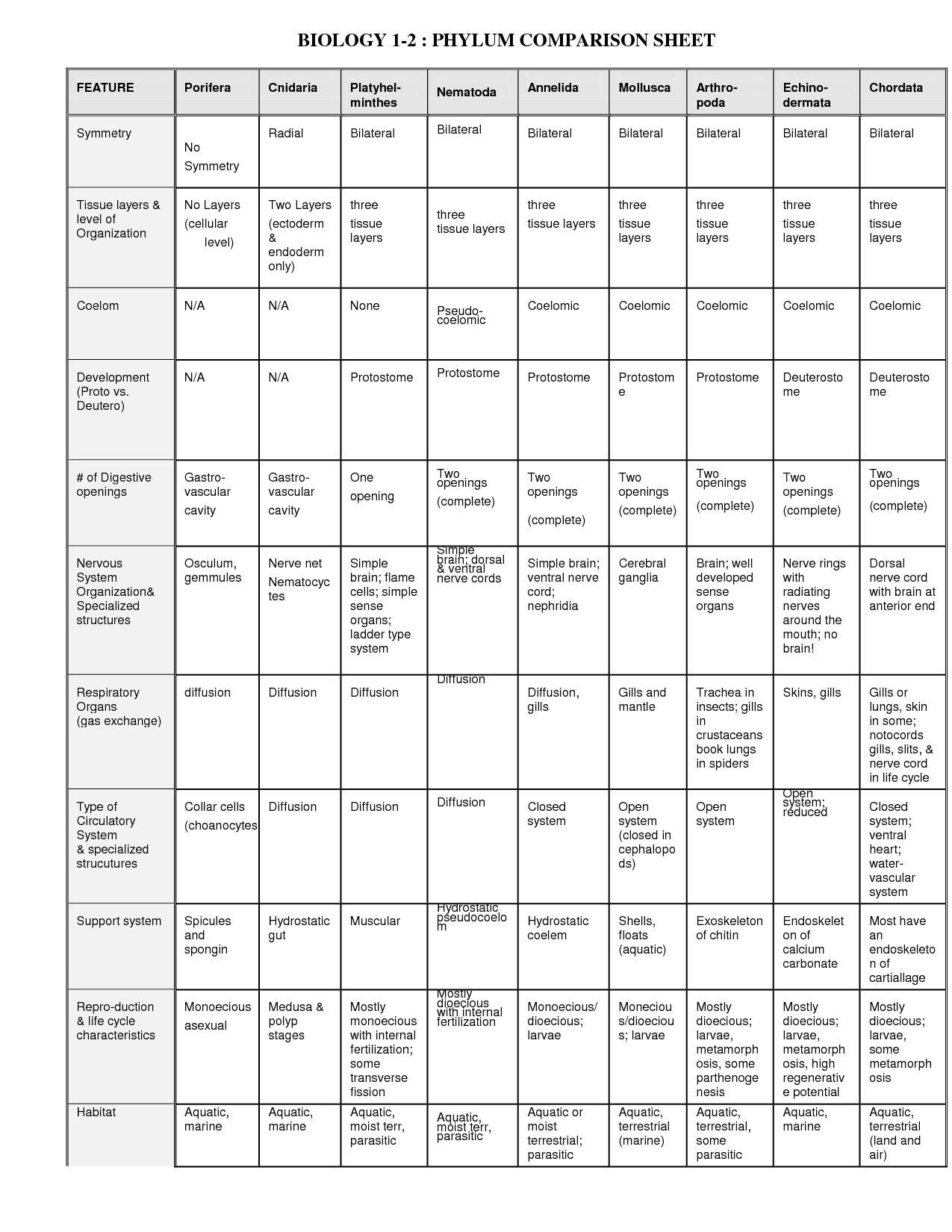 Terrestrial Biomes Chart Worksheet Answers